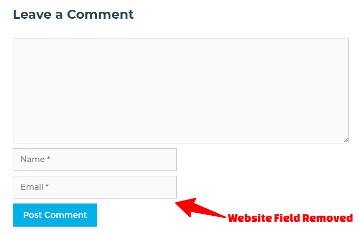 Comment Box Without Website URL Field